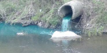 У річку на Прикарпатті виливають хімію. ВІДЕО