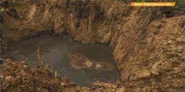 У п'яти місцях на Прикарпатті нафта стікає просто у місцеву річку. ВІДЕО