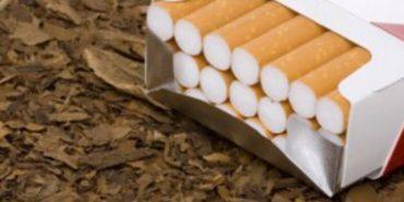 На Франківщині вилучили велику партію незаконно виготовлених тютюнових виробів