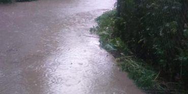 Негода на Коломийщині: у Печеніжині рятувальники евакуювали пенсіонера, подвір'я якого було затоплене