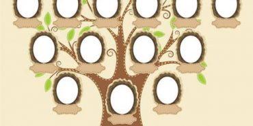 Прикарпатці можуть створити генеалогічне дерево онлайн