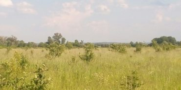 Підприємець на Коломийщині віддав орендовану ним землю учасникам АТО