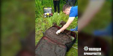 Поліція оприлюднила відео з місця, де знайшли тіло студентки з Болгарії. ВІДЕО 18+