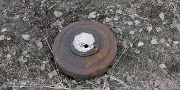В Лісній Слобідці, що на Коломийщині, у лісі виявили небезпечну знахідку