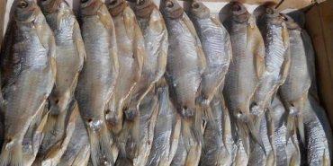 """Коломиян застерігають від вживання в'яленої риби виробника ФОП Меркулова А. В., постачальника ТОВ """"Чудо-Юдо"""""""