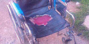 Прикарпатські доброчинці шукають візок для дівчини з інвалідністю