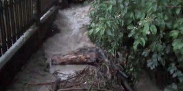 З'явилося відео підтоплення на Франківщині. ВІДЕО