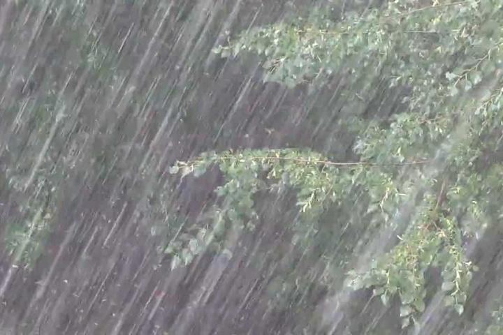 Чергове штормове попередження оголосили на Прикарпатті