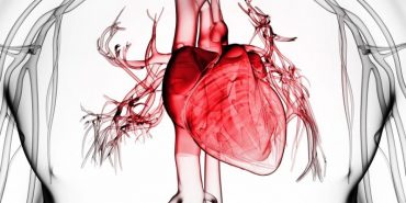 30 простих і непростих речей, щоб захистити ваше серце. Поради кардіологів