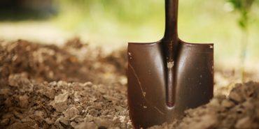 На Коломийщині особливо цінні землі два роки незаконно використовувалися під виглядом обробітку
