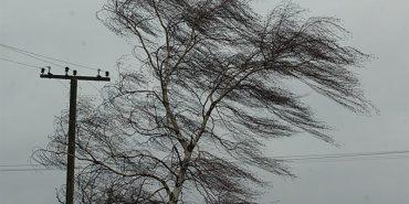 Мешканців Прикарпаття попереджають про сильний вітер