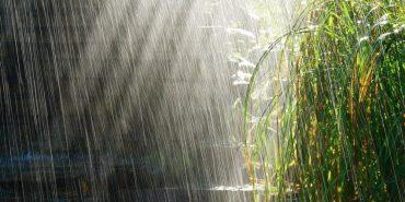 На Прикарпатті сьогодні знову дощитиме
