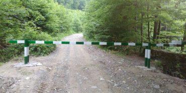 На Прикарпатті через аномальну спеку в'їзди у ліси закриють шлагбаумами
