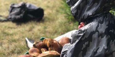 """Марія Яремчук похизувалася відпочинком в Карпатах: """"У Верховині гриби кращі, ніж у Амстердамі"""". ФОТО"""