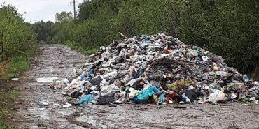 На Прикарпатті висипали велику купу сміття просто на дорозі. ФОТОФАКТ