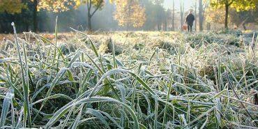 На Прикарпатті очікуються заморозки та сильний туман — оголошено штормове попередження
