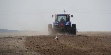 На Прикарпатті почали сіяти озимі зернові