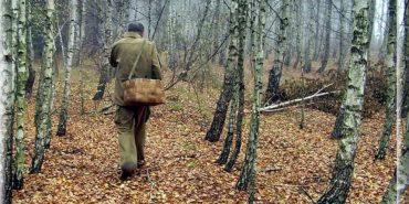 Прикарпатські рятувальники шукають зниклого грибника з Кривого Рогу