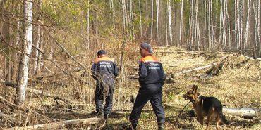 Знайшовся грибник, якого майже добу шукали в лісі на Прикарпатті
