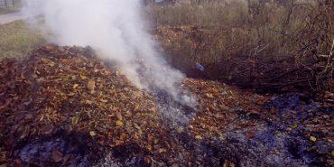 Прикарпатцям нагадують про заборону спалювання сухого листя