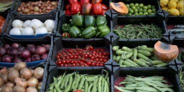 Які сезонні фрукти та овочі безпечно їсти в липні. ІНФОГРАФІКА
