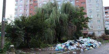"""Звідки гори сміття? У Коломиї """"Житлоінфоцентр"""" перестав існувати, тепер буде – """"911"""""""