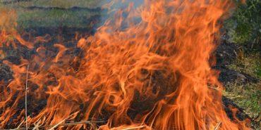 Церква закликає не спалювати залишки рослинності. ВІДЕО