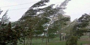 На Прикарпатті оголосили штормове попередження: вітер посилюється