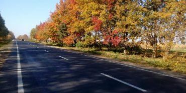 Головний дорожник області похвалився відремонтованою дорогою на Коломийщині. ФОТО