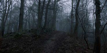 На Коломийщині вісім чоловіків скрутили неповнолітнього і відвезли у ліс