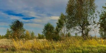 Неймовірні світлини золотої осені на Коломийщині