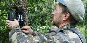 Чоловік встановив фотопастки у Чорнобильській зоні. ФОТО