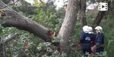 На Франківщині буревій завдав чимало шкоди. ВІДЕО