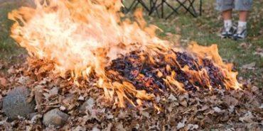 Що робити з коломиянами, які масово спалюють листя і сміття? ОПИТУВАННЯ