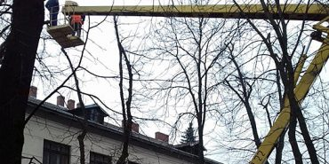 На перекритому бульварі в Коломиї зрізають гілки дерев. ФОТО