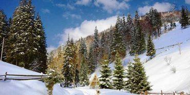 Новий рік і Різдво в Карпатах вже розкупили, – експерт