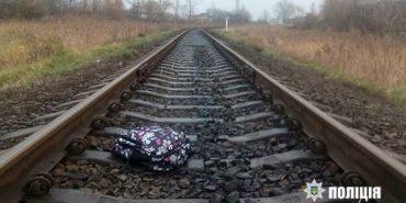 Поліція розповіла подробиці нападу на дев'ятирічну дівчинку на Прикарпатті. ФОТО