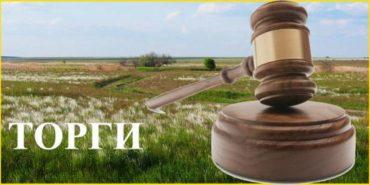 Коломийська міська рада проводить конкурс з відбору виконавців земельних торгів