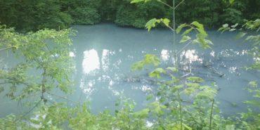 На Франківщині у ставку знайшли тіло чоловіка