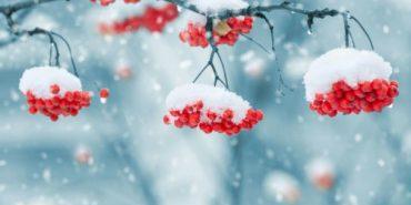 Синоптики розповіли, якою буде зима в Україні