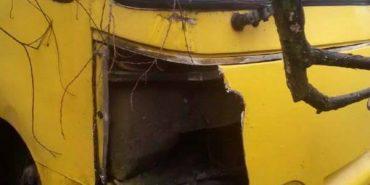 На Франківщині автобус зніс дві електроопори – водій втік. ФОТО
