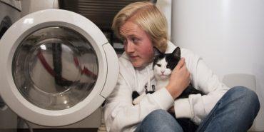 Кіт вижив після 40-хвилинного прання у машинці. ФОТО