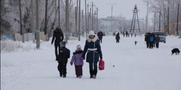 На Коломийщині діти щоранку 4 кілометри йдуть до школи через ліси та аварійний міст. ВІДЕО