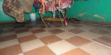 Подробиці умов проживання в одній з психлікарень на Прикарпатті. ФОТО
