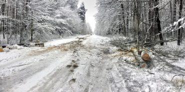 Прикарпаття готове до складних погодніх умов, запевняє ОДА