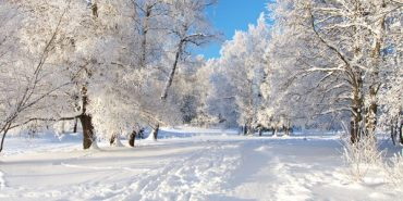 Синоптики розповіли, чого чекати прикарпатцям від погоди у найближчі дні
