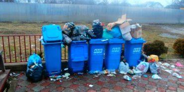 """Директор """"AVE"""" стверджує, що проблем з вивезенням сміття у Коломиї немає"""