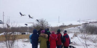 Школярі з Прикарпаття допомагають лелекам. ФОТО