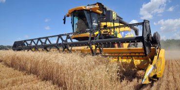 СБУ затримала злочинців, які ошукали прикарпатських фермерів на майже півмільйона гривень
