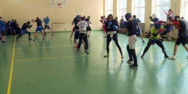 У Коломиї Національна збірна України з боксу готується до чемпіонату Європи. ВІДЕО